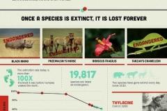 biodiversity01