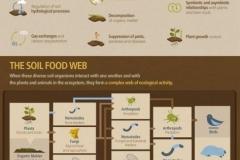 biodiversity03