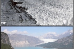 Glacier 1941 and recent