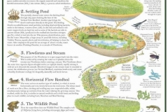 permaculture05